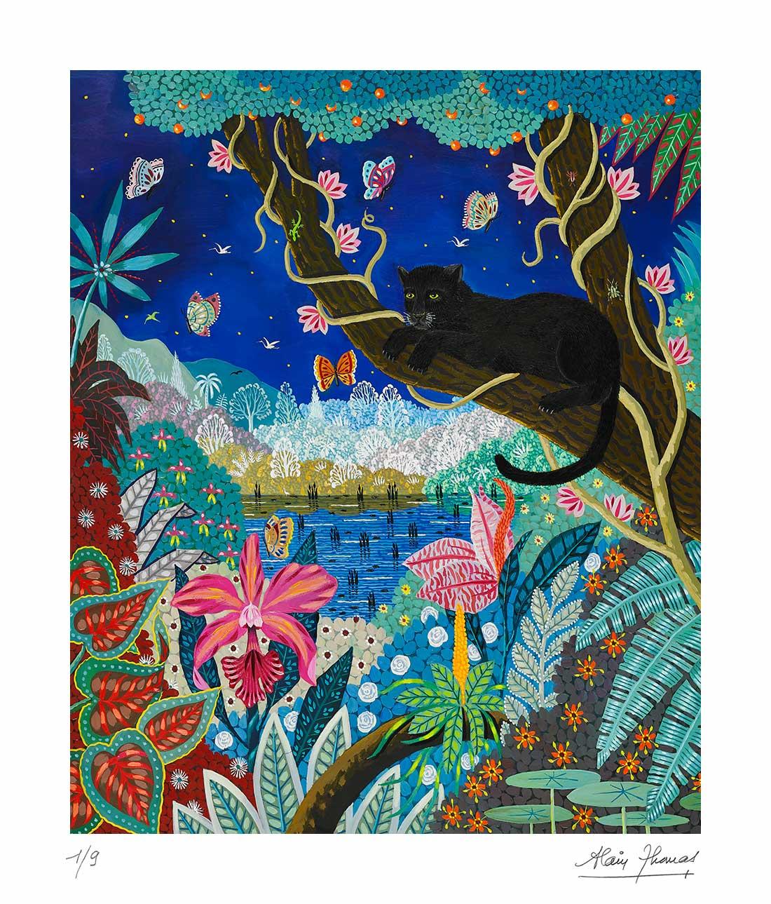 Panthère noire nocturne