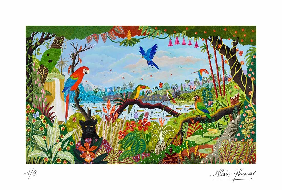 Jungle aux trois aras