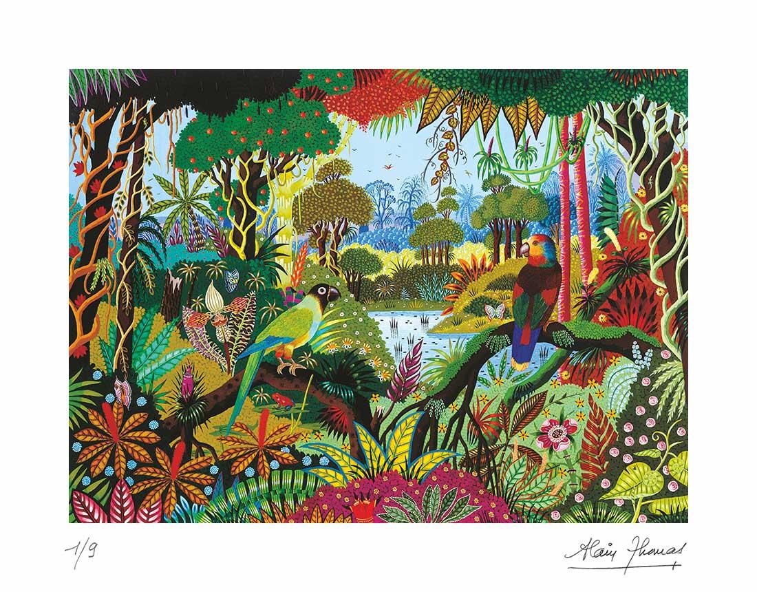 Perruche Nanday et Amazone de Guilding